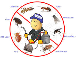 Nexus Pest Management and Services_image0