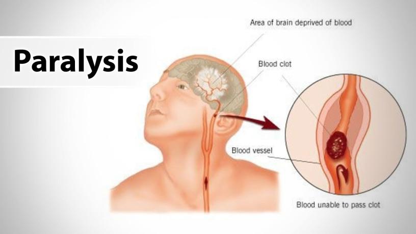 Hayat Naturo Ayurvedic Clinic_image4