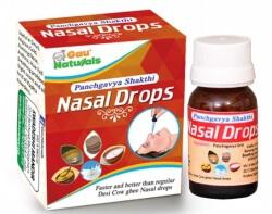 Nasal Drops 10 Ml- Gau Naturals