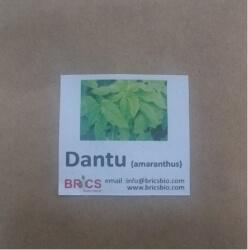 Vegetable Seeds Pack - Brics