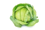 Cabbage - 600 Gms to 800 Gms (Approx.)