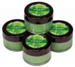 Mint Lip Balm 10 Gms - Vaadi