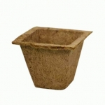 Coir Pot 10 - For Green
