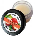 Lychee Lip Balm 10 Gms - Vaadi