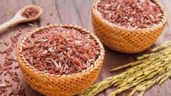 Rajamudi Rice 1 Kg-Eco Store