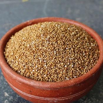 Arikalu Kodo Millet 1 Kg-Prakruthivanam