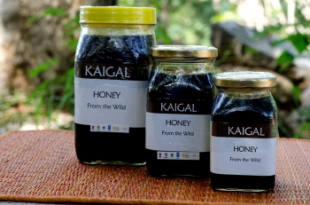 Amla N Honey 220 Gms - Kaigal Trust