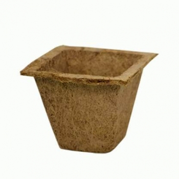 Coir Pot 10 - For Green