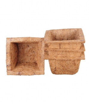 Coir Pot 4 inch Spanish Cup Set of 6 Pc-for Green