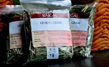 Lemon Grass Tea 50 Gms - Kaigal Trust