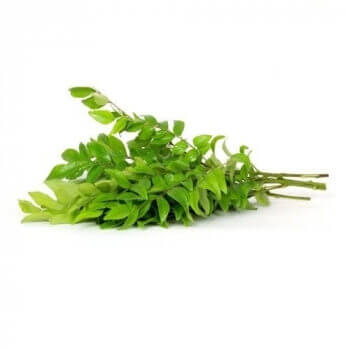 Curry Leaves  -1 Bunch