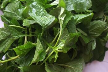 Harive Leaves  -1 Bunch