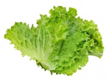 Lettuce Leaves  -1 Bunch