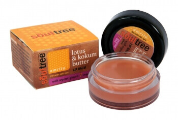 Lotus & Kokum Butter Lip Balm 6 Gms-Soul Tree