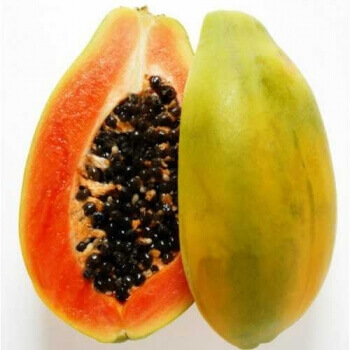 Papaya Fruit -1 Kg to 1.3 Kg (Approx.)