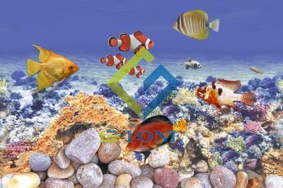 Glossy Fish WallTile 12x18 - 7005 HL2(100)