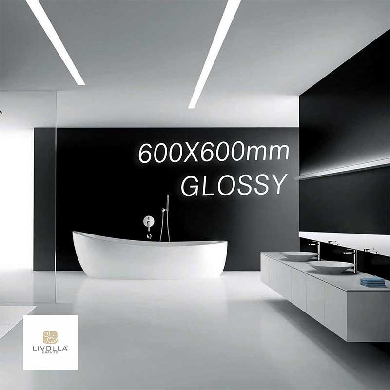 600X600 Glossy Series Catalog