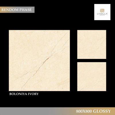 800x800 Glossy BOLONIYA IVORY