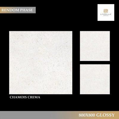 800x800 Glossy CHAMOIS CREMA