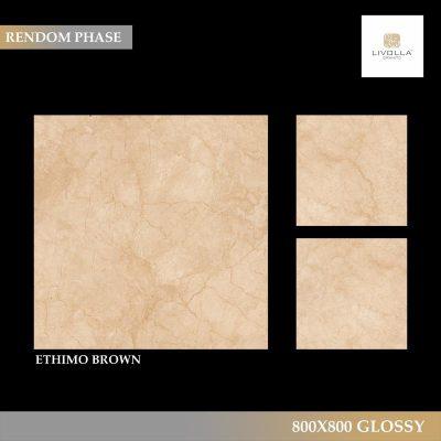 800x800 Glossy ETHIMO BROWN