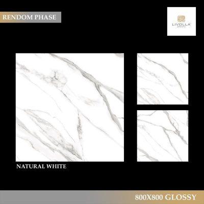800x800 Glossy NATURAL WHITE