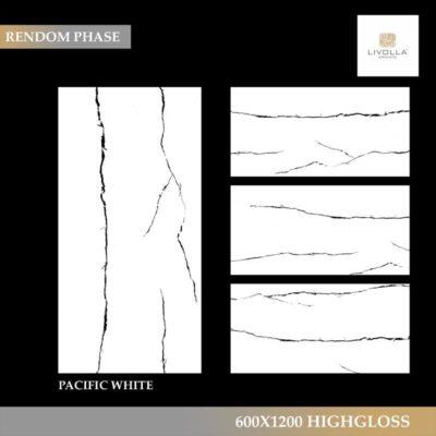 PACIFIC WHITE