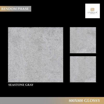 800x800 Glossy SEASTONE GRAY