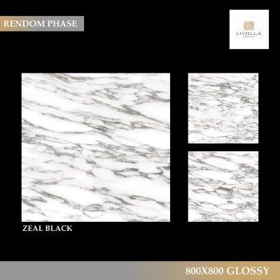 800x800 Glossy ZEAL BLACK