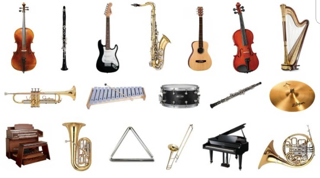 Musical Instruments & Professional Audio