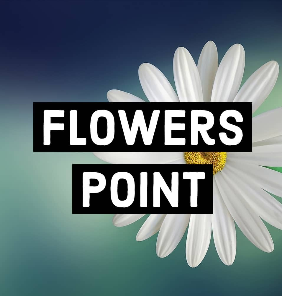 Flowers Point