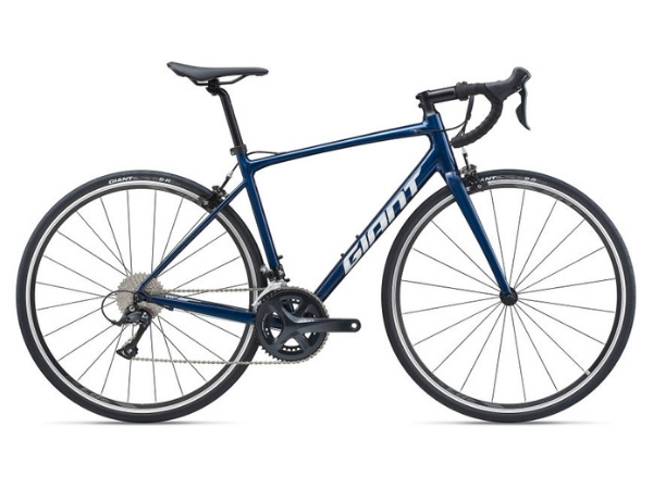 Giant Contend 1 (2021)
