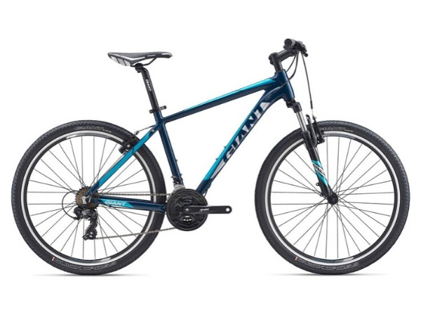 """Giant Rincon 2020