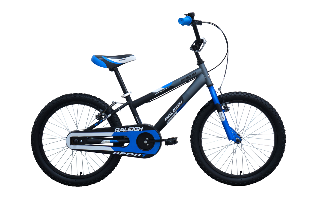 raleigh sport 20 2014 white with blue