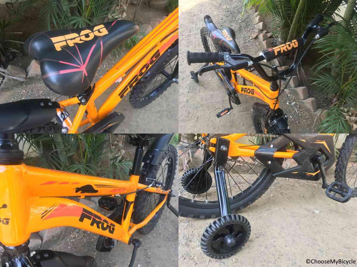 Frog Plus Rider 20 Snapshot Review