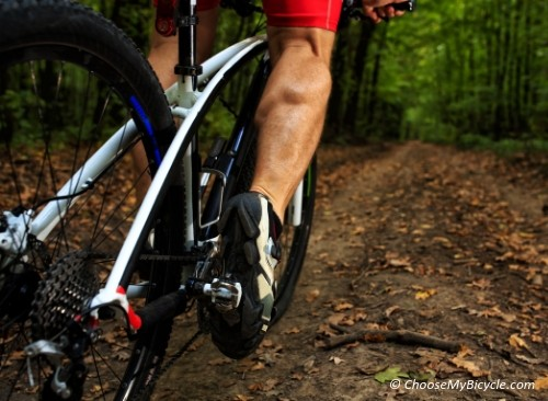 Cycling and Fatigue-3