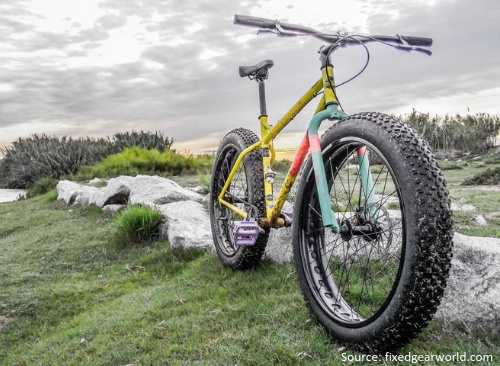 What is the craze for Fat Bikes-3
