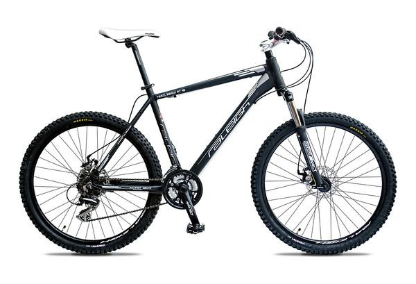 raleigh at 10 2014 black