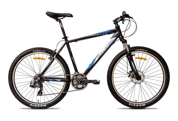 Raleigh Terrain 10 2014 Online Best Price And Offers In India