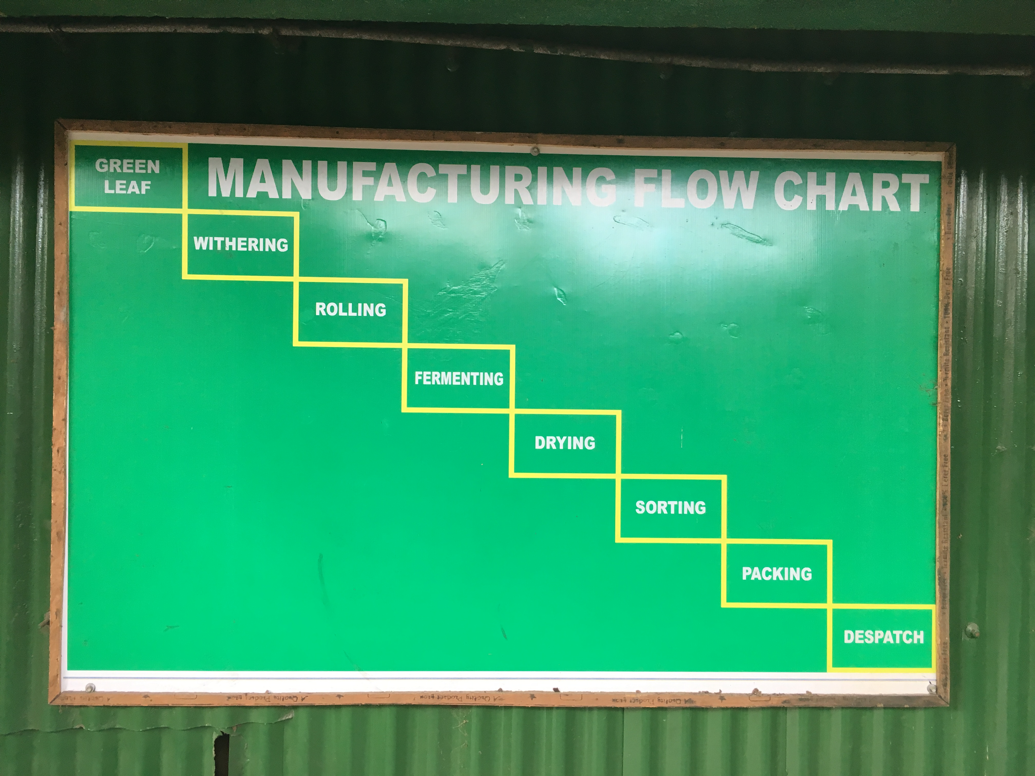 Manufacturing flow chart of tea production