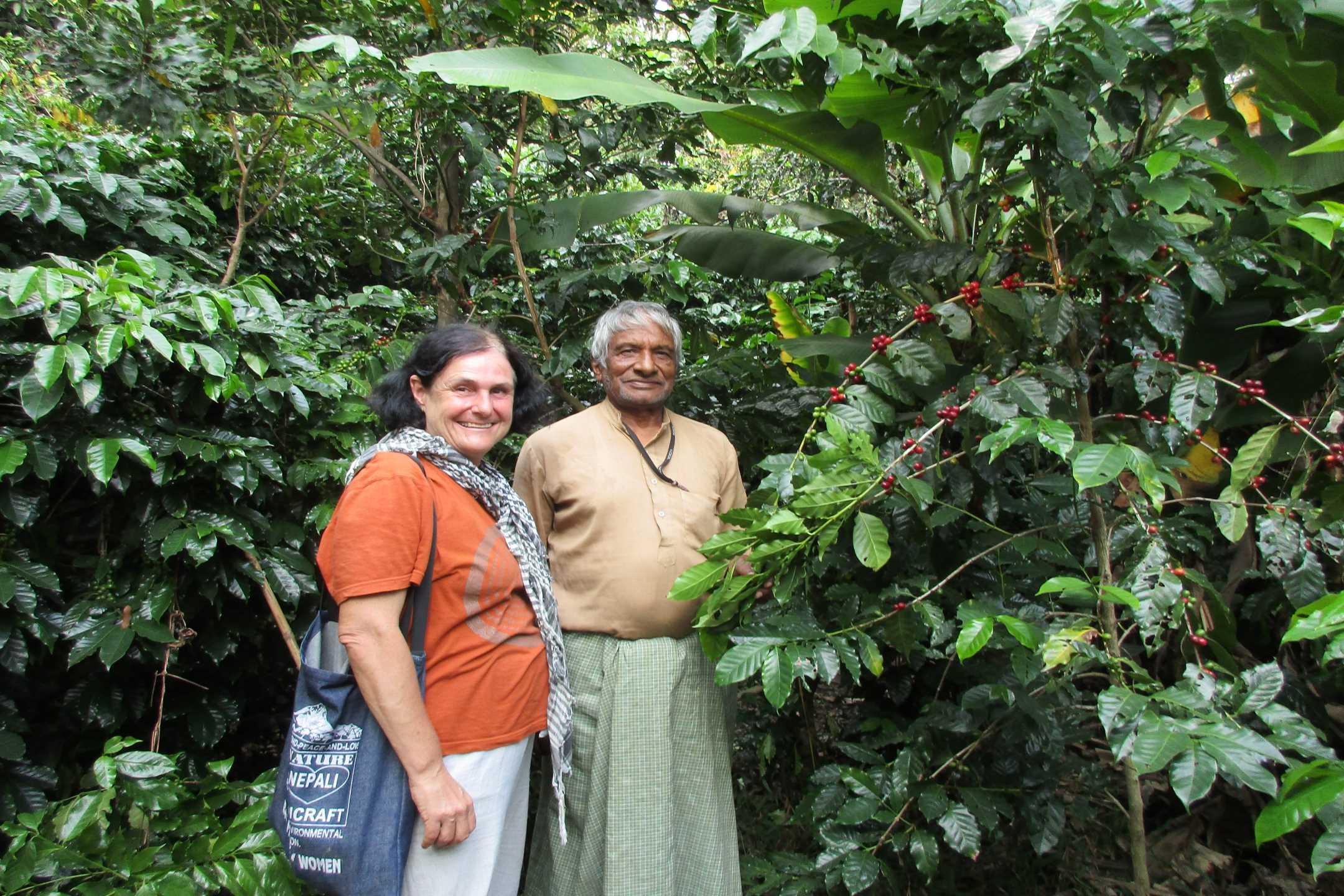 Coffee Plantation in Tansen