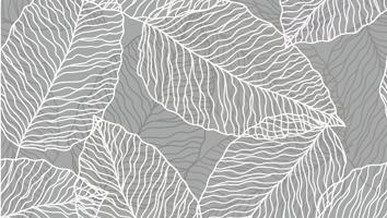 Image of Vectors