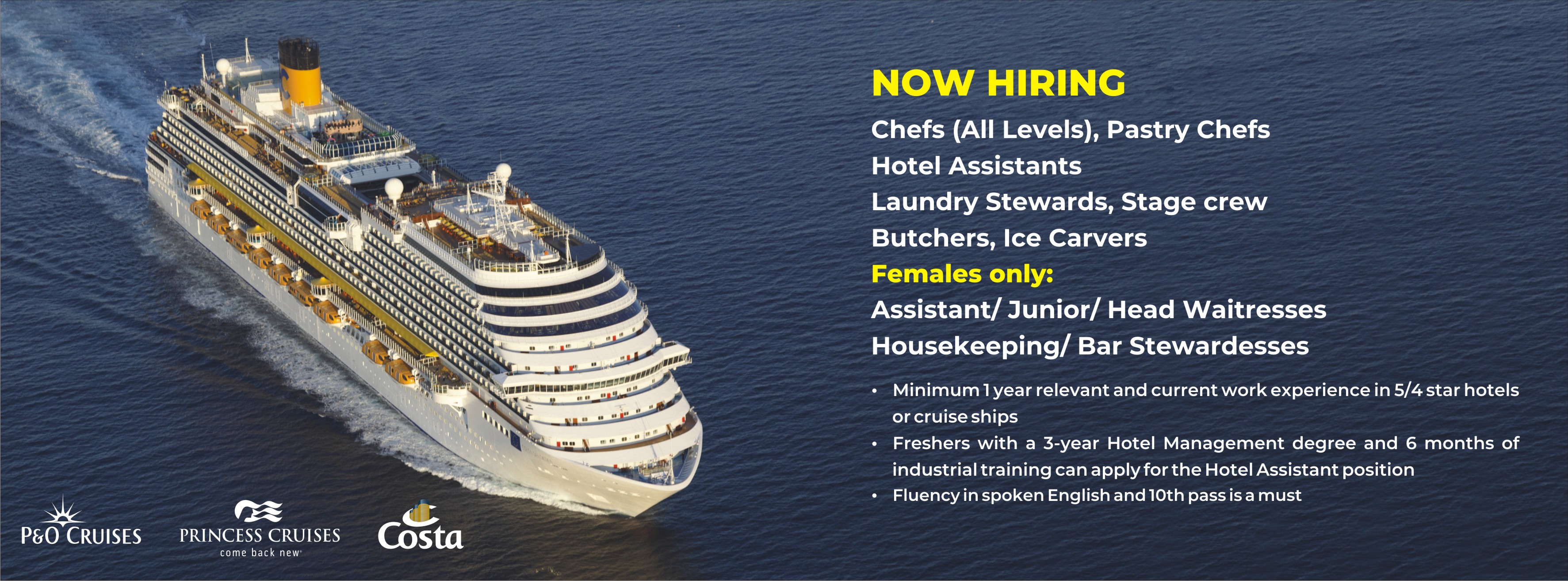 Cruise Careers