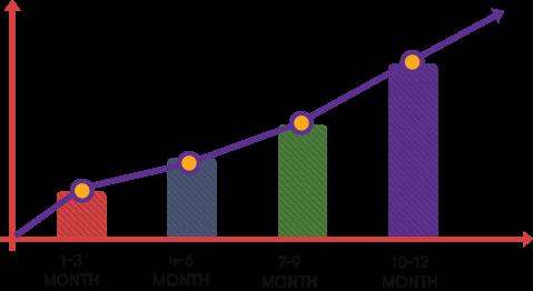Earning Chart