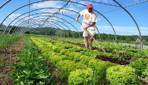 जैविक खेती के नाम पर विश्व को गुमराह कर रही है सरकार  : डीबी चौहान