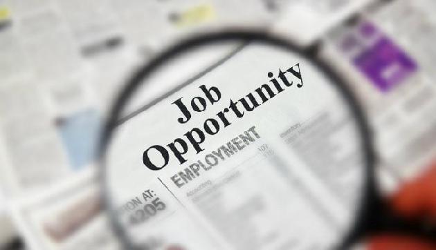 सरकार नौकरी का सुनहरा मौका, निकली बंपर भर्ती, सैलरी 80 हजार