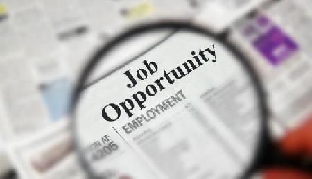 खुशखबरी! युवाओं के लिए फिर सरकारी नौकरी, 67 हजार रु है Salary