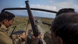 काजीरंगा में शिकारियों और पुलिस के बीच मुठभेड़, AK-56 बरामद