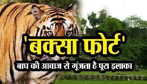'Buxa Fort' : बाघ की आवाज से गूंजता है ये इलाका