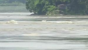इस राज्य में बढ़ता जा रहा है बाढ़ का कहर, खतरे में हजारों की जानें, चिंतित सरकार