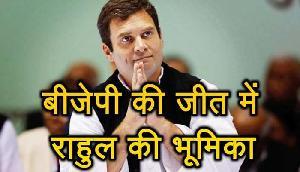2019 के चुनाव में भाजपा काे जीत दिलाने में राहुल गांधी की होगी मुख्य भूमिका, जानिए  कैसे?